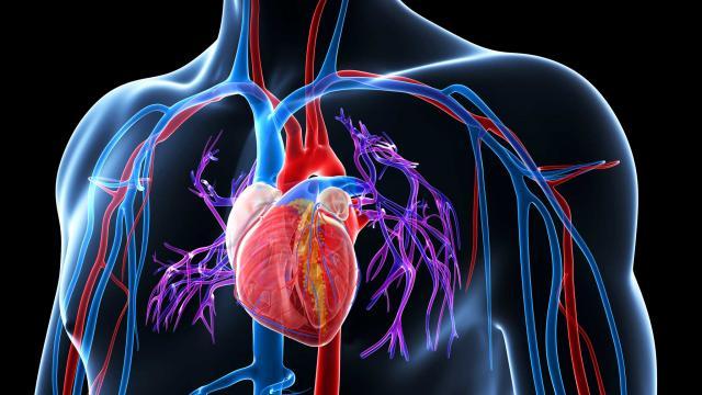Nadciśnienie – choroba XXI wieku?