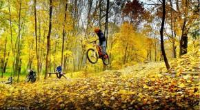 Sport jesienią
