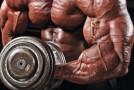 Trening na gęstość mięśni