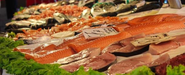 Tania ryba słodkowodna nie taka zła