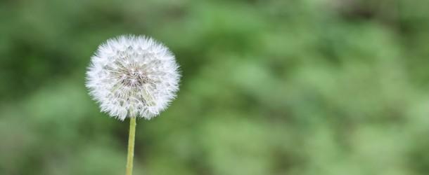 Odczulanie jako skuteczny sposób leczenia alergii