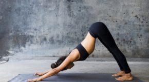 Treningi – joga