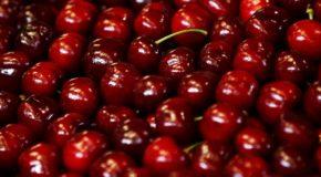 Wiśnie i czereśnie – dla zdrowia i urody