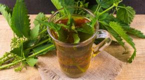 Herbata z pokrzywy?
