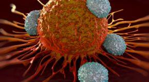 Walcząc z nowotworami